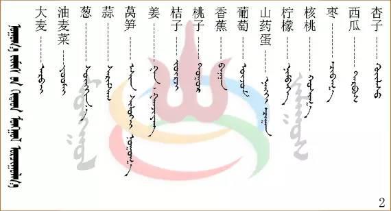 水果.蔬菜.粮食.食材的名称81种(蒙古文+汉语) 第11张