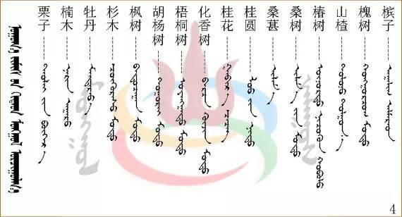 水果.蔬菜.粮食.食材的名称81种(蒙古文+汉语) 第12张