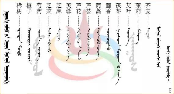 水果.蔬菜.粮食.食材的名称81种(蒙古文+汉语) 第13张
