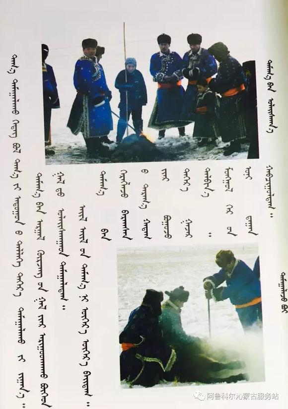 应知的蒙古五畜知识之----马(图文) 第6张