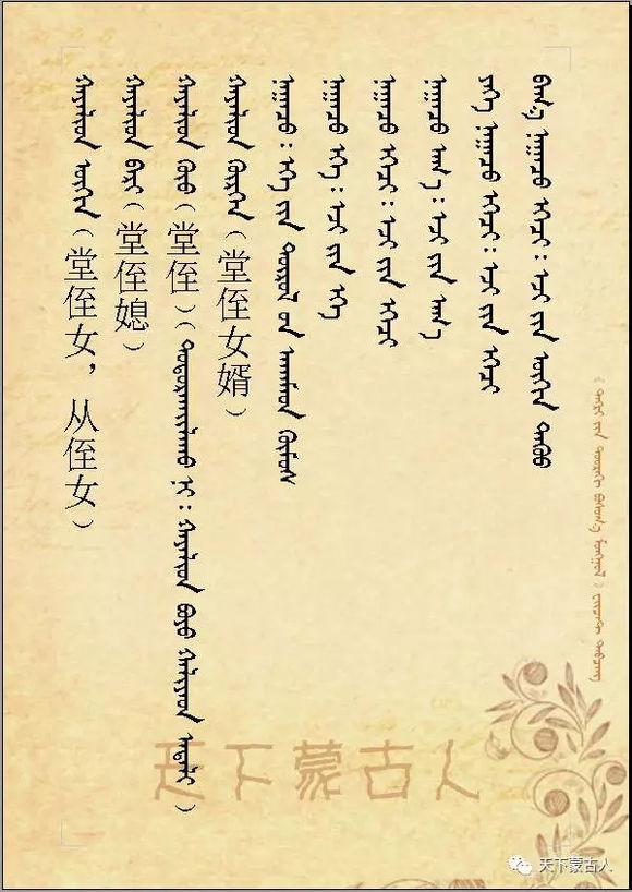 蒙古族亲属辈分称呼大全 第7张