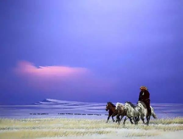 画家笔下的蒙古骏马,栩栩如生 仿佛要从画里跑出来 ... 第1张