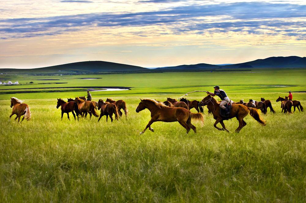 有关套马的摄影图2 第7张