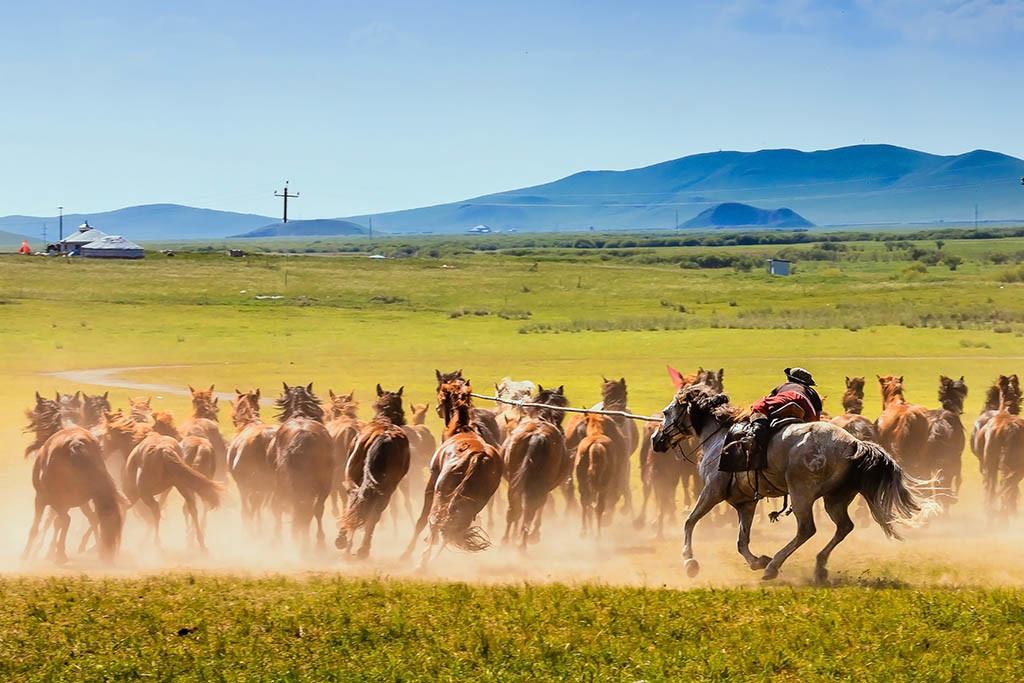 有关套马的摄影图2 第16张