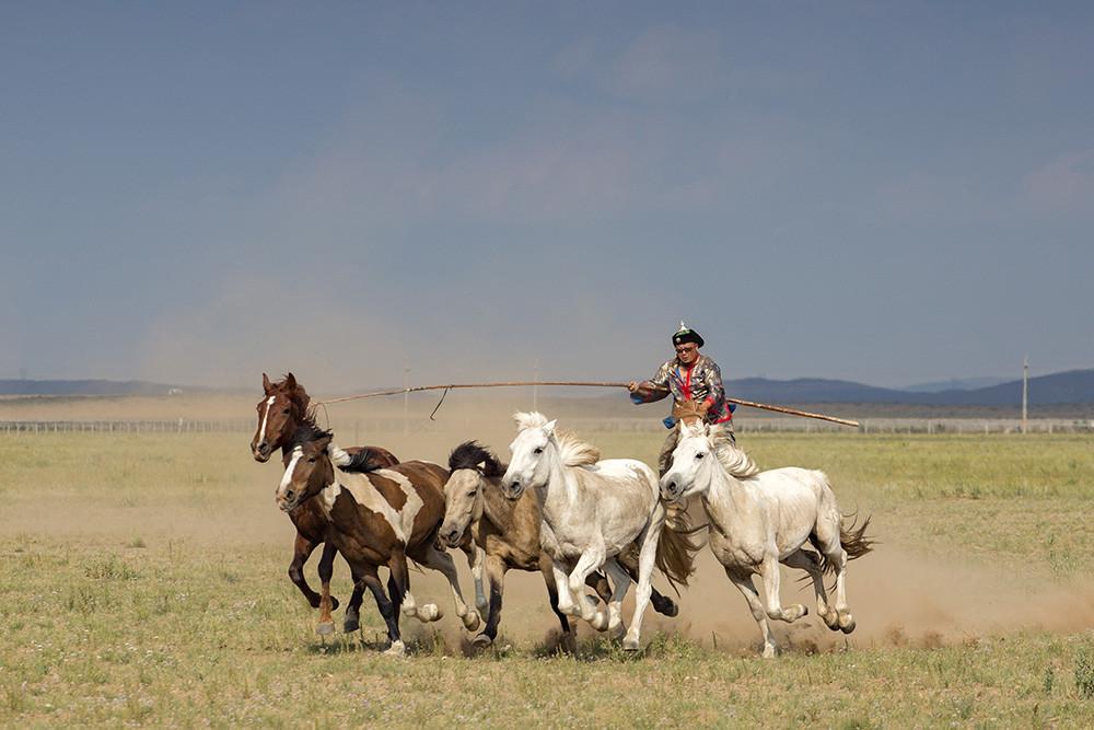 有关套马的摄影图3 第15张