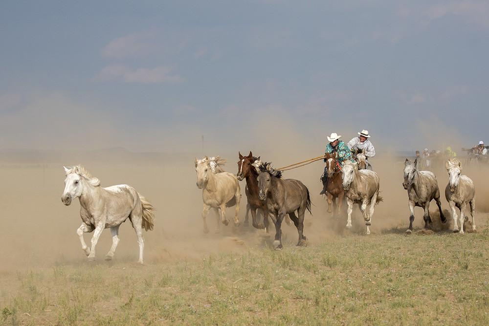 有关套马的摄影图3 第19张