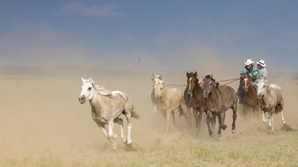有关套马的摄影图3 第18张