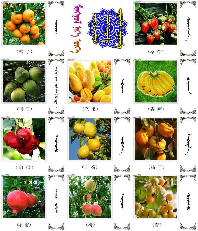 名词合集:水果.蔬菜.粮食.食材的名称81种(蒙古文 汉语) 第2张