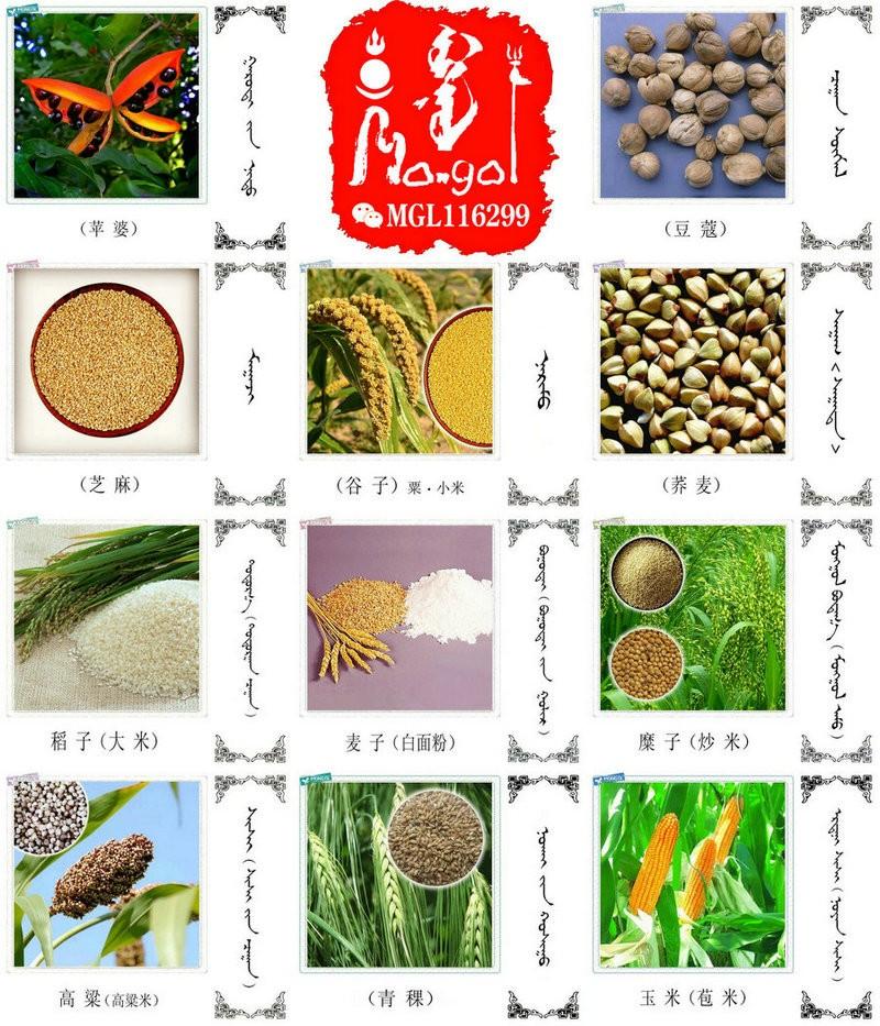 名词合集:水果.蔬菜.粮食.食材的名称81种(蒙古文 汉语) 第5张