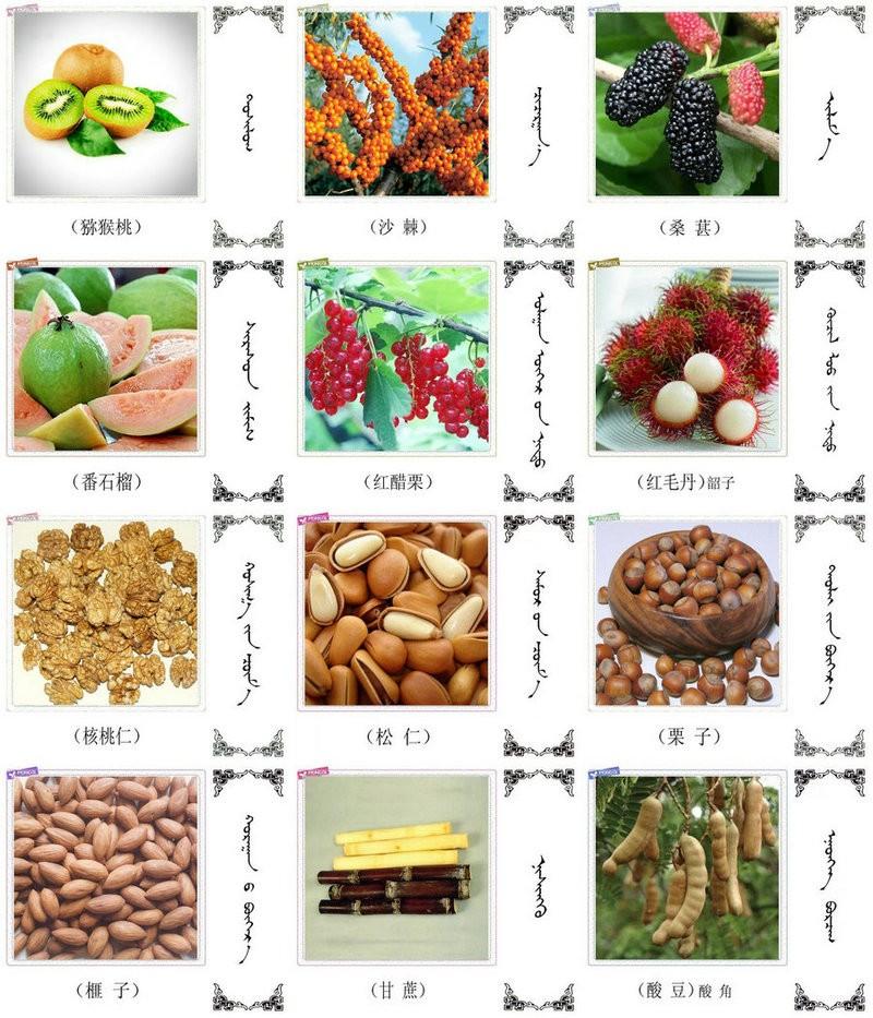 名词合集:水果.蔬菜.粮食.食材的名称81种(蒙古文 汉语) 第4张