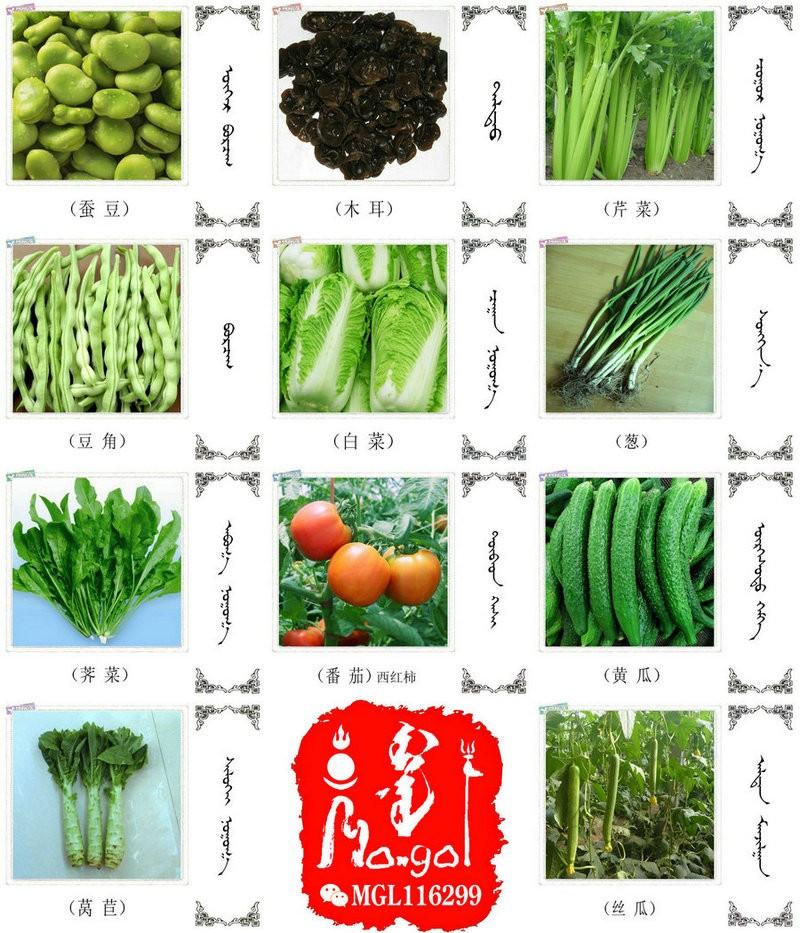 名词合集:水果.蔬菜.粮食.食材的名称81种(蒙古文 汉语) 第7张