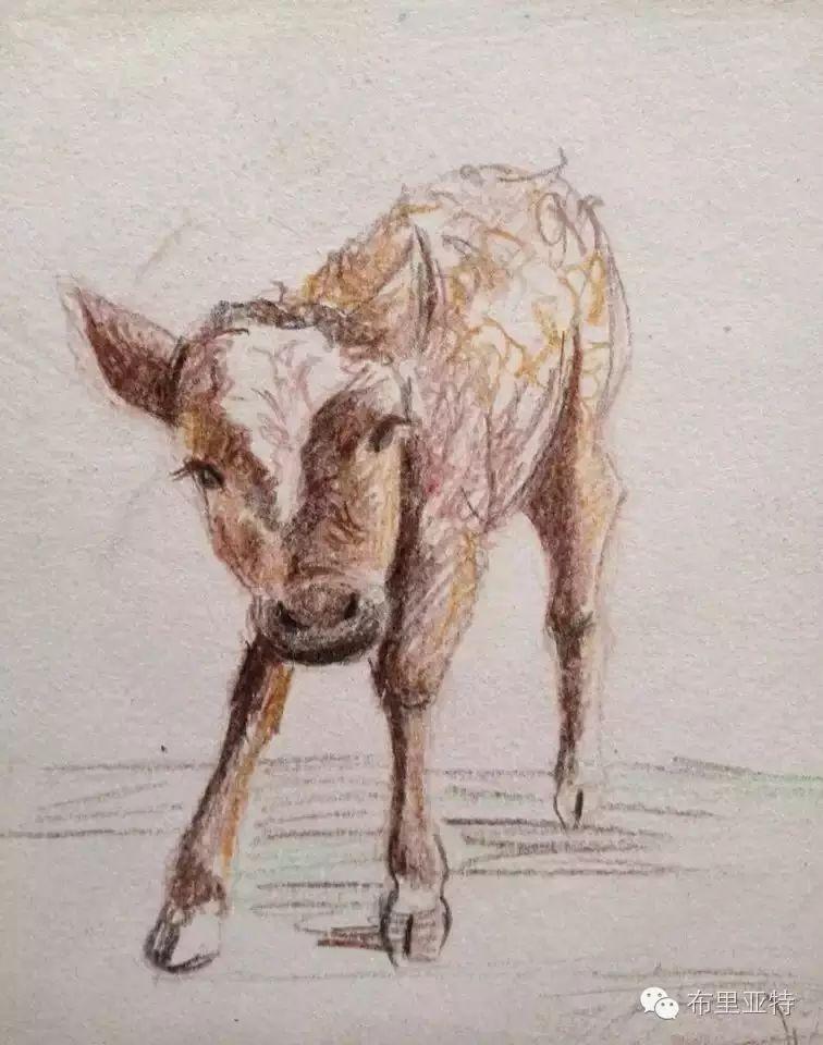 美术老师南德尔的绘画作品欣赏 第13张