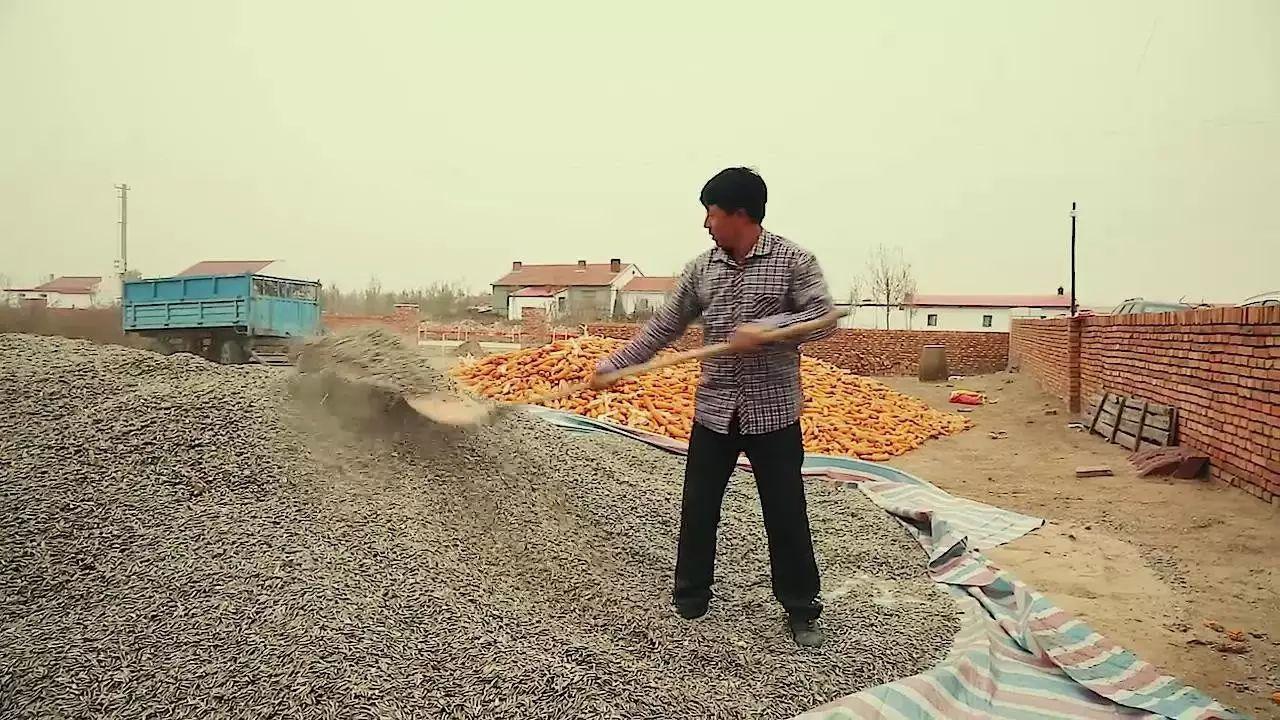 【CNTV视频】蒙古文书法家(1)—农民篆刻家白七斤半 第4张