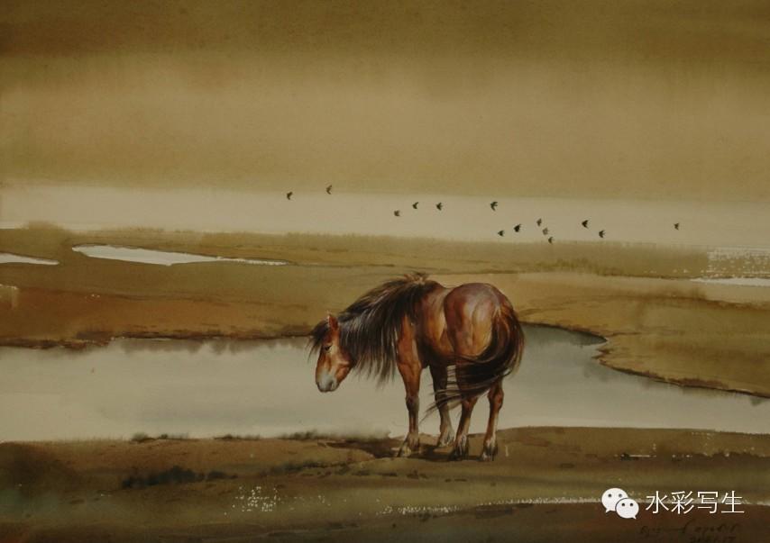 🔵著名水彩艺术家——巴达日胡老师的作品 第12张
