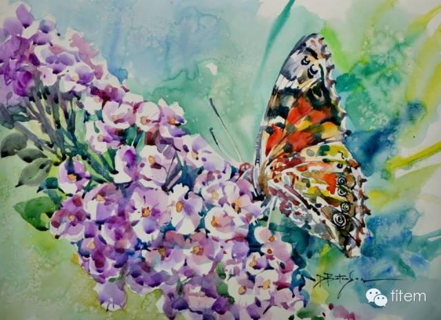 画家达. 巴图那顺水彩画作品分享 第31张