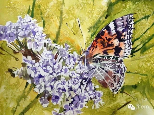 画家达. 巴图那顺水彩画作品分享 第36张