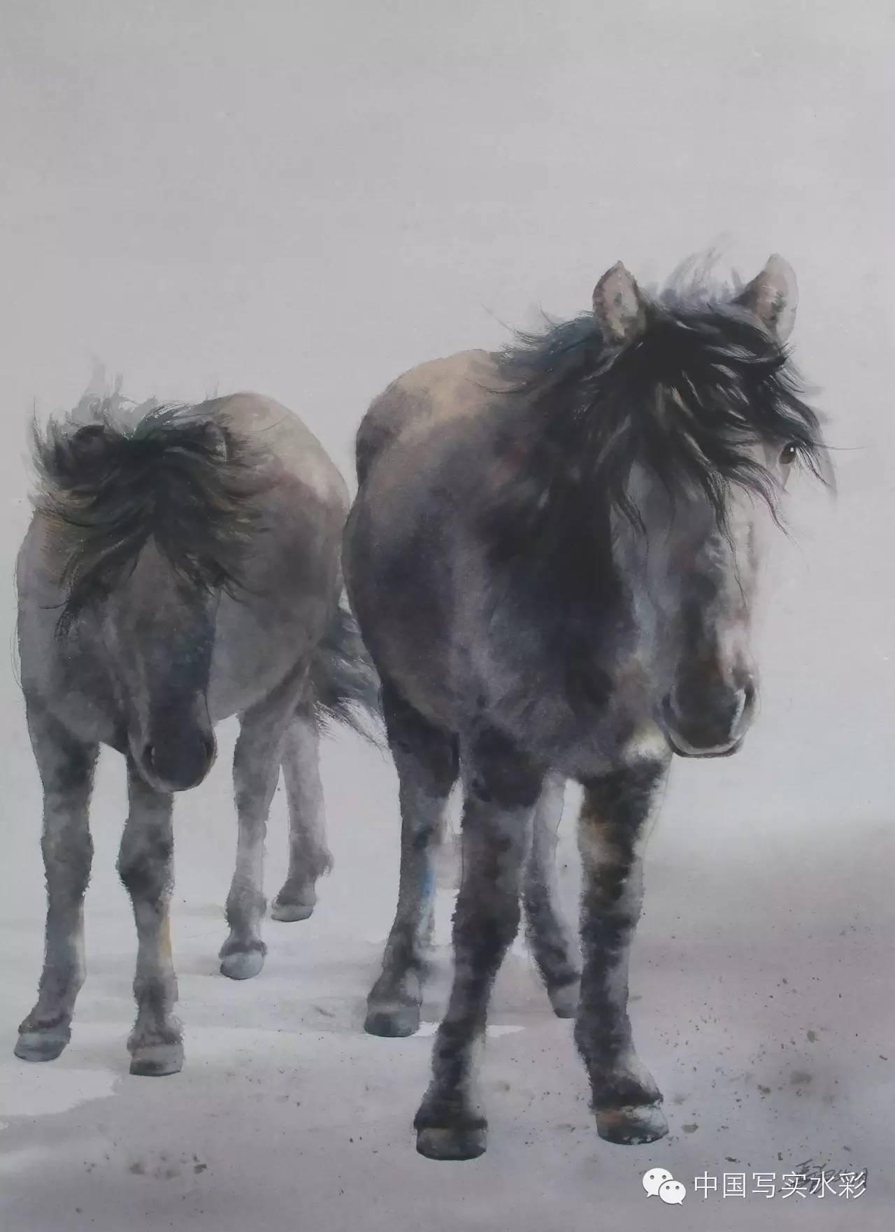 中国写实水彩第一回展——参展画家长海作品欣赏 第12张