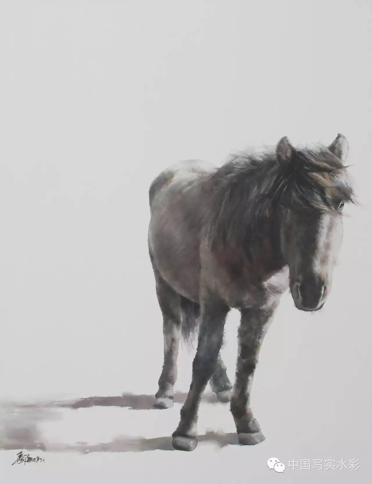 中国写实水彩第一回展——参展画家长海作品欣赏 第15张