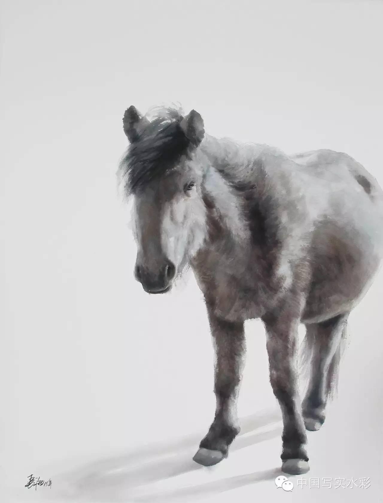 中国写实水彩第一回展——参展画家长海作品欣赏 第14张
