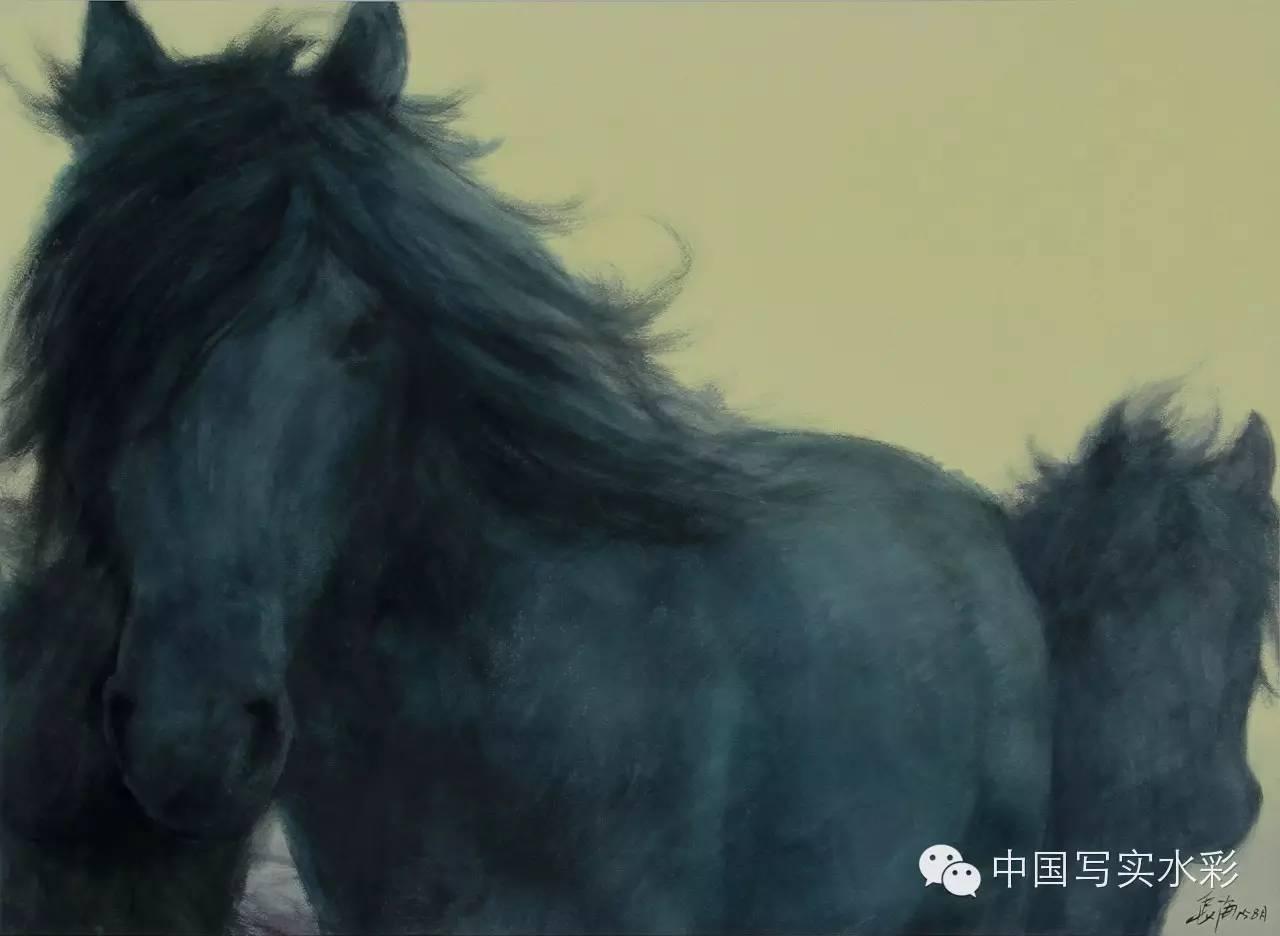 中国写实水彩第一回展——参展画家长海作品欣赏 第20张