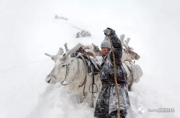摄影集 | 蒙古察坦驯鹿族影像 · Hamid Sardar 第3张