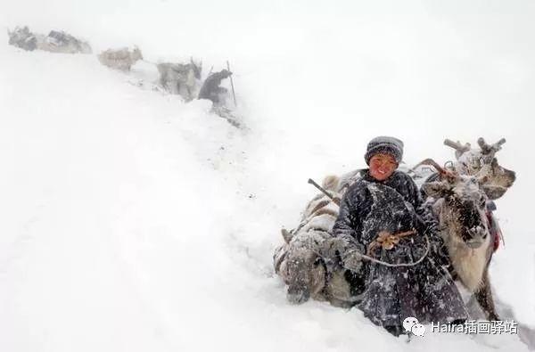 摄影集 | 蒙古察坦驯鹿族影像 · Hamid Sardar 第5张