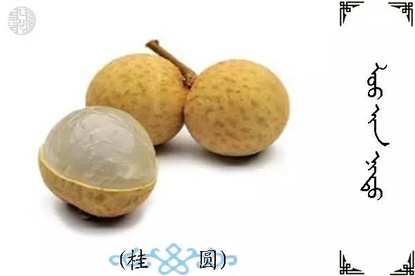 蒙古名词(水果) 第3张