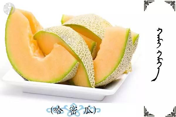 蒙古名词(水果) 第2张
