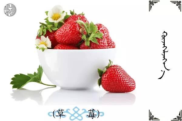蒙古名词(水果) 第6张