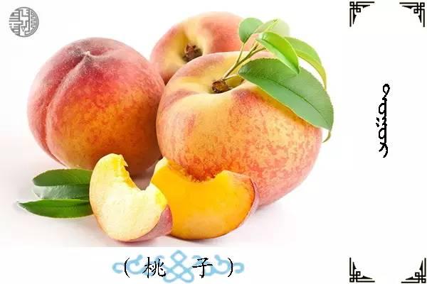 蒙古名词(水果) 第4张