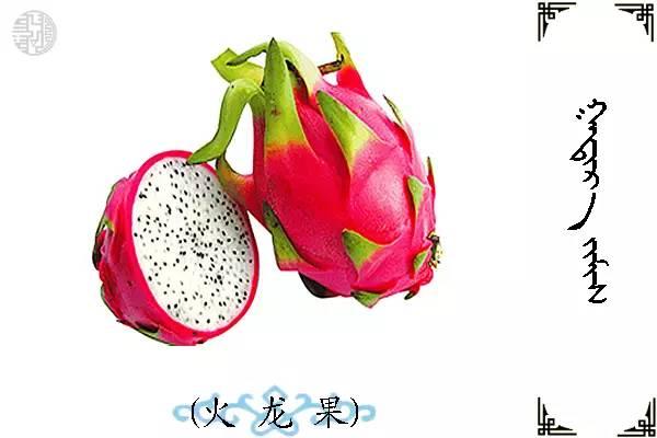 蒙古名词(水果) 第13张