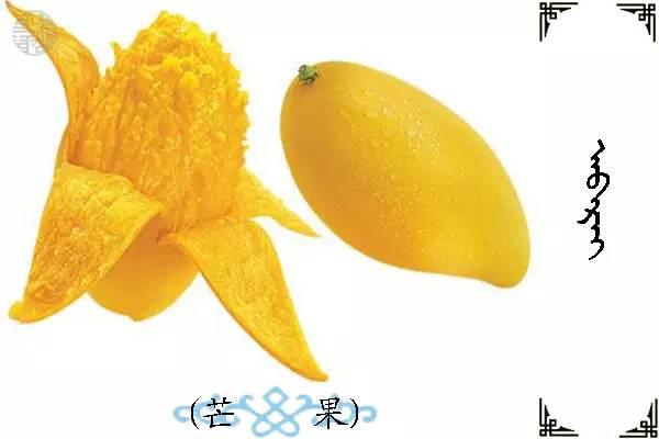蒙古名词(水果) 第9张