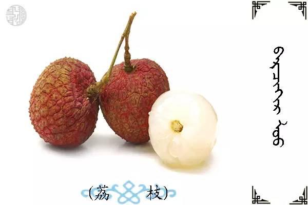 蒙古名词(水果) 第11张