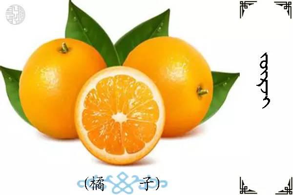 蒙古名词(水果) 第12张