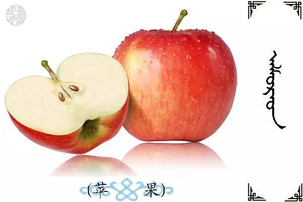 蒙古名词(水果) 第17张