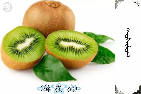 蒙古名词(水果) 第16张