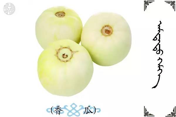 蒙古名词(水果) 第21张