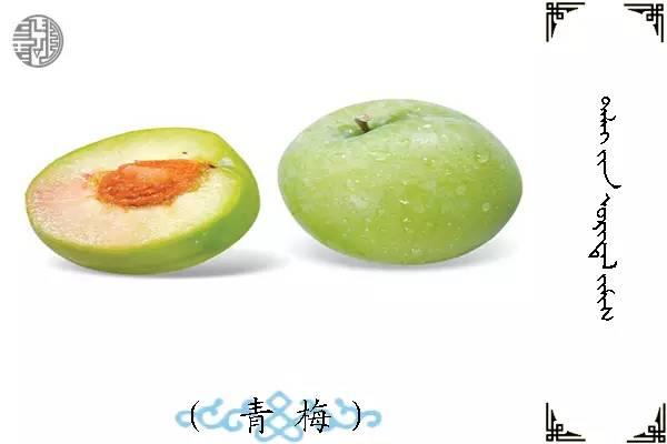 蒙古名词(水果) 第15张