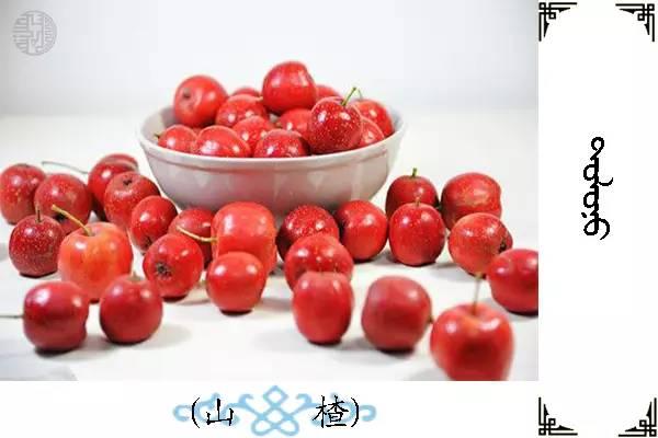 蒙古名词(水果) 第14张
