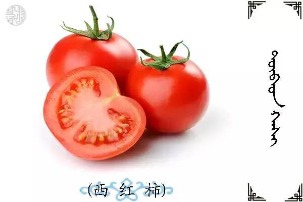 蒙古名词(水果) 第28张