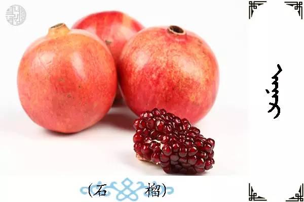 蒙古名词(水果) 第23张