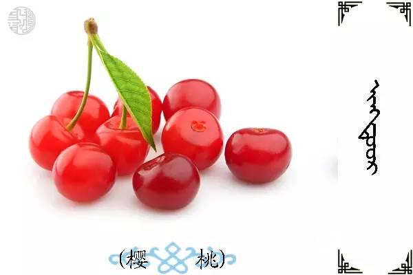 蒙古名词(水果) 第30张