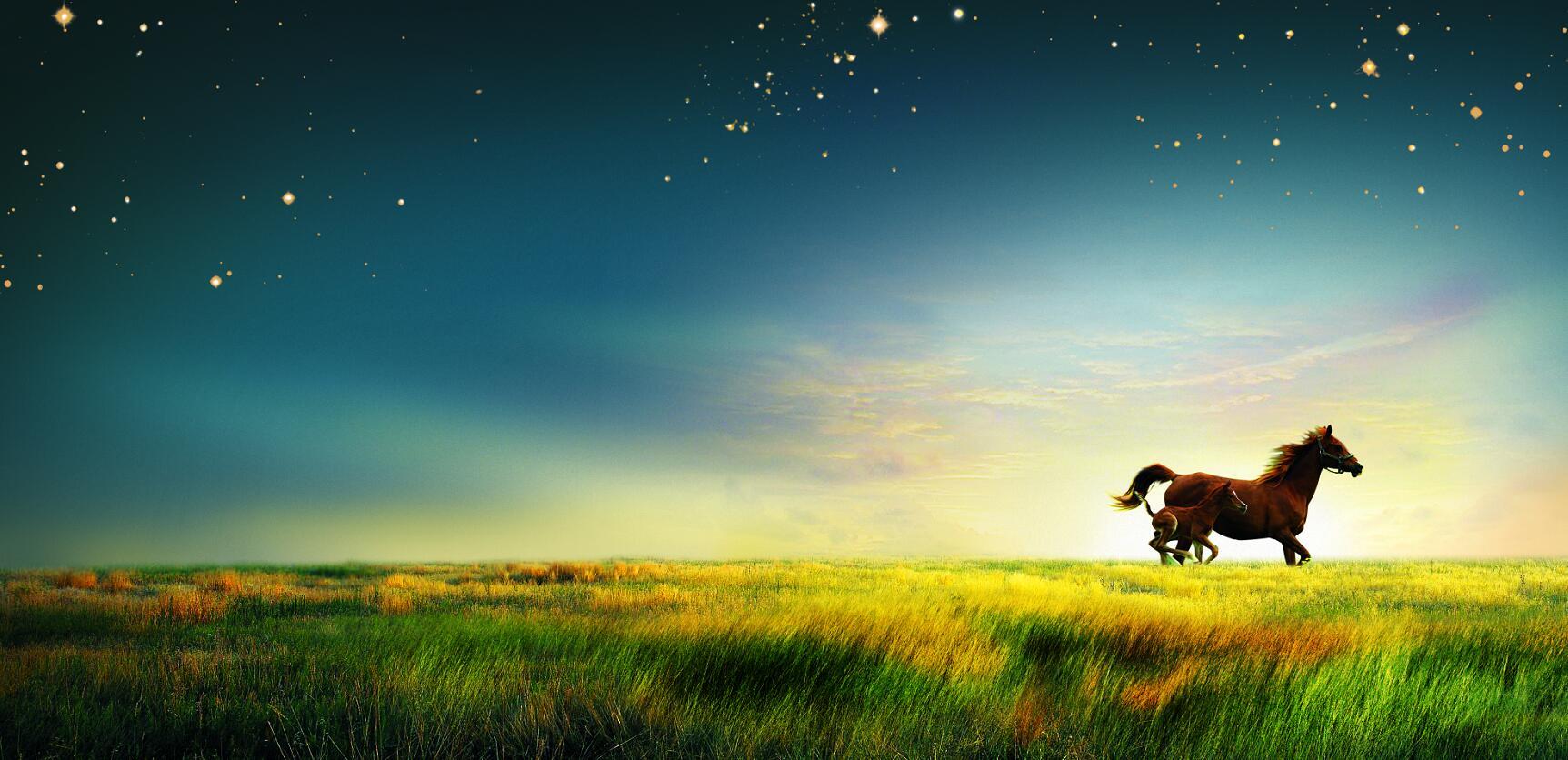 草原奔驰的骏马