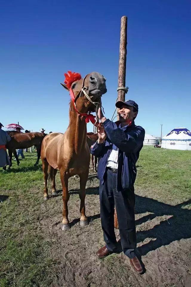 40个蒙古人的40年 蒙古人过去四十年的最高成就…… 第16张