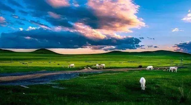 【今日头条】珍贵!内蒙古十二盟市老照片 快看看你的家乡 第74张