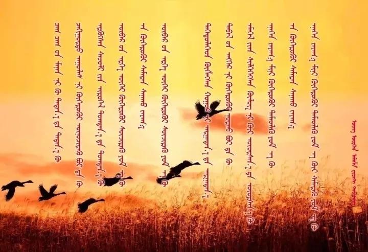◈ 蒙古歌词100首(第2部) 第28张
