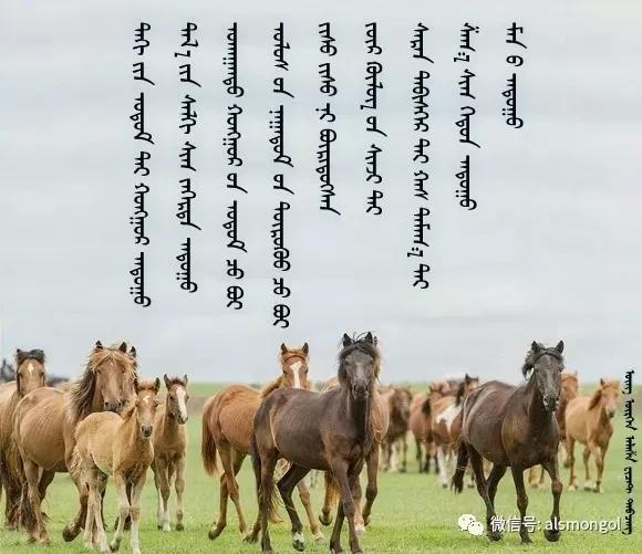 ◈ 蒙古歌词100首(第3部) 第19张
