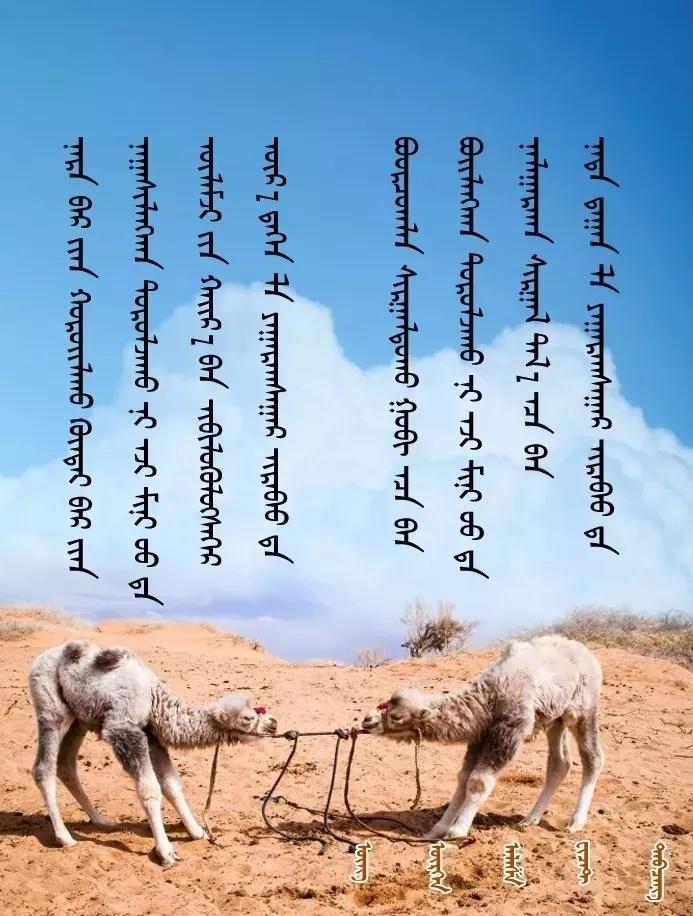 ◈ 蒙古歌词100首(第5部) 第10张