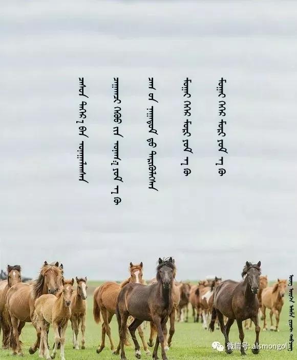 ◈ 蒙古歌词100首(第5部) 第41张