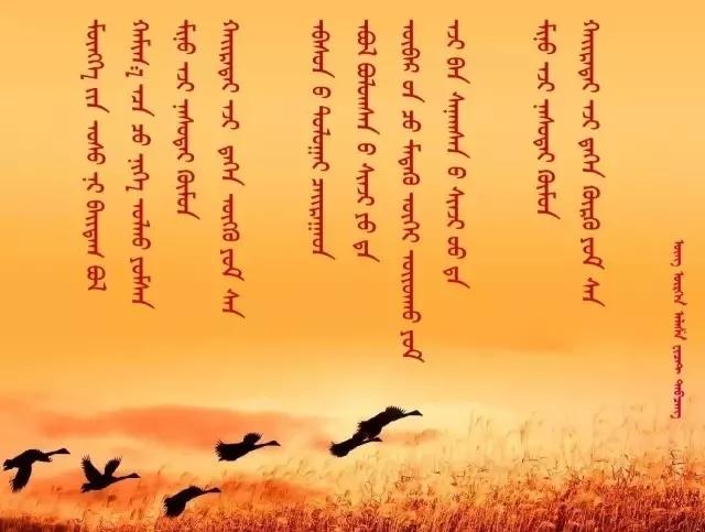 ◈ 蒙古歌词100首(第6部) 第57张